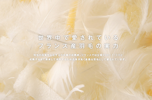 スクリーンショット 2015-10-30 12.27.45