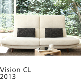 Vision CL 2013