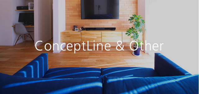 ConceptLine Other
